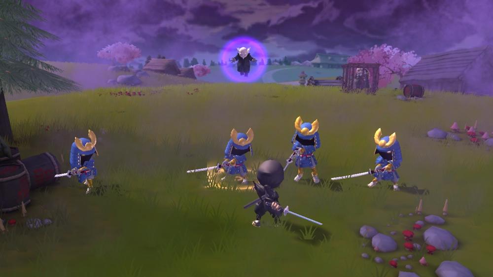 Mini Ninja Adventures Field
